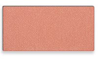 Get your Shy Blush mineral cheek color from Mary Kay here.